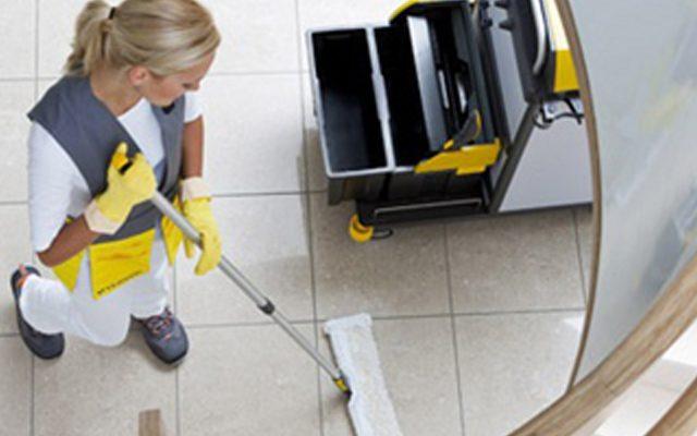 Prímula – Excelência em Produtos de Limpeza Profissional